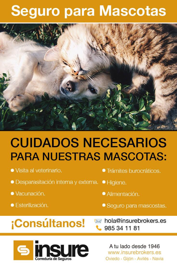 Seguro para mascotas y animales domésticos